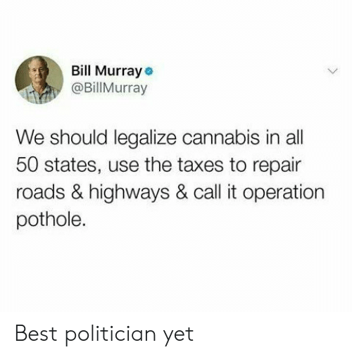 50 states: Bill Murray  @BillMurray  We should legalize cannabis in all  50 states, use the taxes to repair  roads & highways & call it operation  pothole. Best politician yet