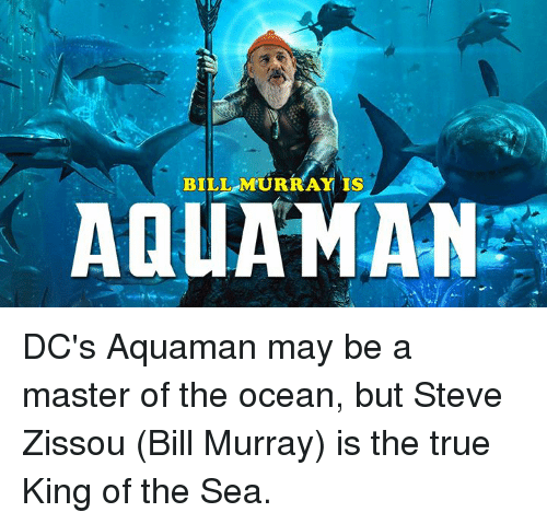 Dank, True, and Bill Murray: BILL MURRAY IS  AQUAMAN DC's Aquaman may be a master of the ocean, but Steve Zissou (Bill Murray) is the true King of the Sea.