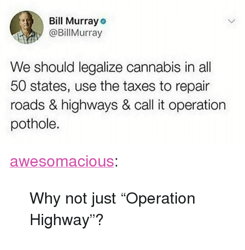 "All 50 States: Bill Murray o  @Billurray  We should legalize cannabis in all  50 states, use the taxes to repair  roads & highways & call it operation  pothole. <p><a href=""http://awesomacious.tumblr.com/post/173558958201/why-not-just-operation-highway"" class=""tumblr_blog"">awesomacious</a>:</p>  <blockquote><p>Why not just ""Operation Highway""?</p></blockquote>"