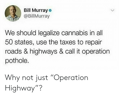 "All 50 States: Bill Murray o  @Billurray  We should legalize cannabis in all  50 states, use the taxes to repair  roads & highways & call it operation  pothole. Why not just ""Operation Highway""?"