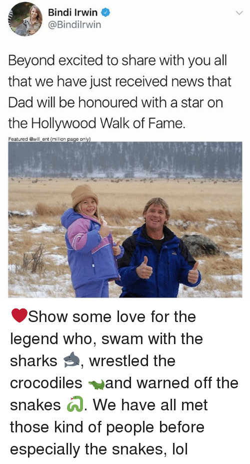 Dad, Lol, and Love: Bindi Irwin  @Bindilrwin  Beyond excited to share with you all  that we have just received news that  Dad will be honoured with a star on  the Hollywood Walk of Fame.  Featured will ent (million  on ❤️Show some love for the legend who, swam with the sharks 🦈, wrestled the crocodiles 🐊and warned off the snakes 🐍. We have all met those kind of people before especially the snakes, lol