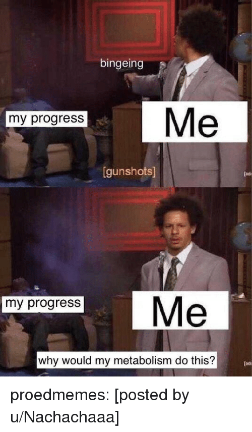 Tumblr, Blog, and Com: bingeing  Me  my progress  gunshots  my progress  why would my metabolism do this? proedmemes:  [posted by u/Nachachaaa]