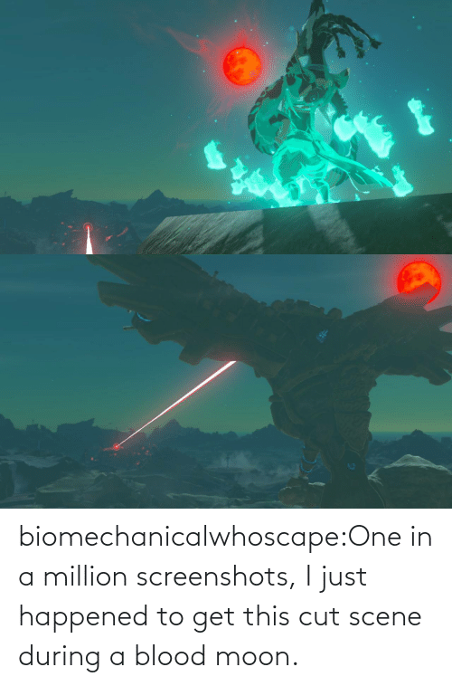 happened: biomechanicalwhoscape:One in a million screenshots, I just happened to get this cut scene during a blood moon.