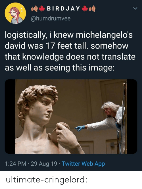 Translate: BIRDJAY  @humdrumvee  logistically, i knew michelangelo's  david was 17 feet tall. somehow  that knowledge does not translate  as well as seeing this image:  1:24 PM 29 Aug 19. Twitter Web App ultimate-cringelord: