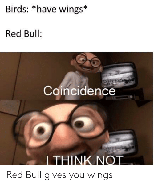 red bull gives you wings: Birds: *have wings*  Red Bull:  Coincidence  THINK NOT Red Bull gives you wings