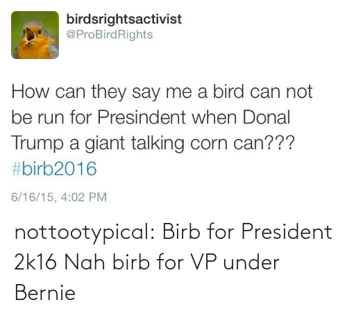Donal Trump: birdsrightsactivist  @ProBirdRights  How can they say me a bird can not  be run for Presindent when Donal  Trump a giant talking corn can???  #birb2016  6/16/15, 4:02 PM nottootypical:  Birb for President 2k16   Nah birb for VP under Bernie