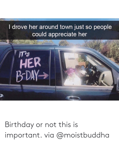 Birthday: Birthday or not this is important. via @moistbuddha