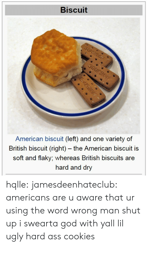 And One: Biscuit  American biscuit (left) and one variety of  British biscuit (right) - the American biscuit is  soft and flaky; whereas British biscuits are  hard and dry hqlle:  jamesdeenhateclub:  americans are u aware that ur using the word wrong  man shut up i swearta god with yall lil ugly hard ass cookies