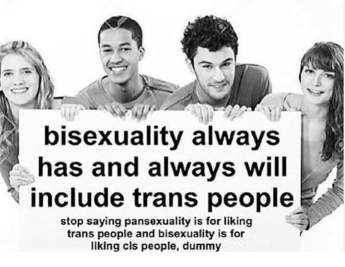 Bisexuality: bisexuality always  has and always will  include trans people  stop saying pansexuality is for liking  trans people and bisexuality is for  liking cis people, dummy