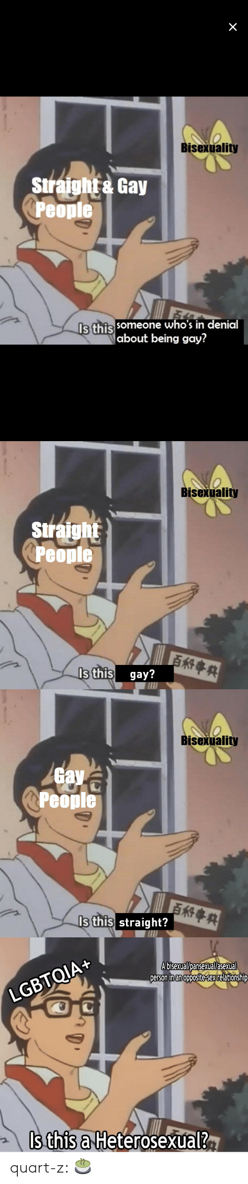 Bisexuality: Bisexuality  Siraht Gay  Peopie  Is this  someone who's in denial  about being gay?   Bisexuality  Siraight  People  s this gay?   Bisexuality  av  People  Is this straight?   LGBTQIA+  A bisexual/Dansexual/asexual  person inan opposite-sex relationshiD  Is this a Heterosexual? quart-z:  🍵