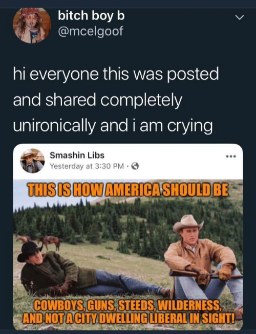 Wilderness: bitch boy b  @mcelgoof  hi everyone this was posted  and shared completely  unironically and i am crying  Smashin Libs  Yesterday at 3:30 PM.  THISIS HOWAMERICASHOULDBE  COWBOYS,GUNS, STEEDS,WILDERNESS  AND NOTACİTY DWELLING LIBERAL INSIGHTL