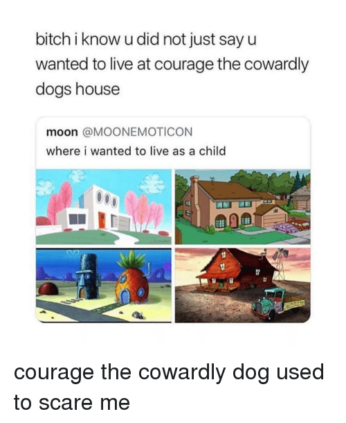 Courage the Cowardly Dog: bitch i know u did not just sayu  wanted to live at courage the cowardly  dogs house  moon @MOONEMOTICON  where i wanted to live as a child courage the cowardly dog used to scare me