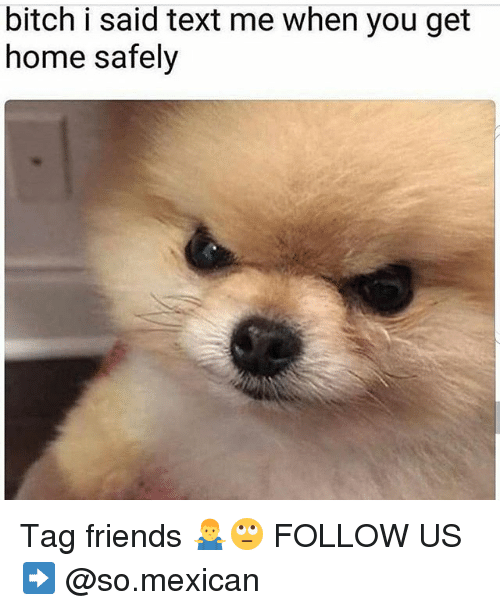 Bitch, Friends, and Memes: bitch i said text me when you get  home safely Tag friends 🤷‍♂️🙄 FOLLOW US➡️ @so.mexican