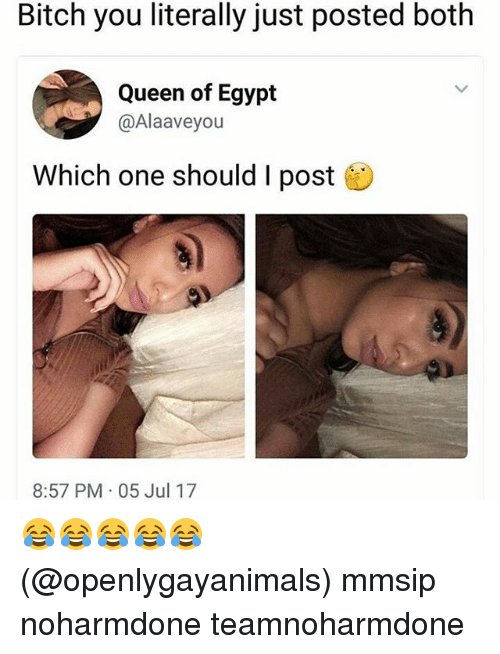 Egyption: Bitch you literally just posted both  Queen of Egypt  @Alaaveyou  Which one should I post  8:57 PM 05 Jul 17 😂😂😂😂😂 (@openlygayanimals) mmsip noharmdone teamnoharmdone