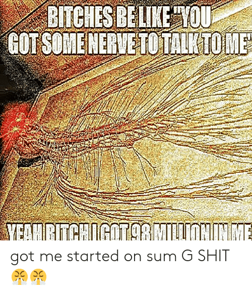 G Shit: BITCHES BE LIKE TOU  GOT SOMENERVETO TALKTOME  MEAMRITCHIGOT98MILONNME got me started on sum G SHIT😤😤
