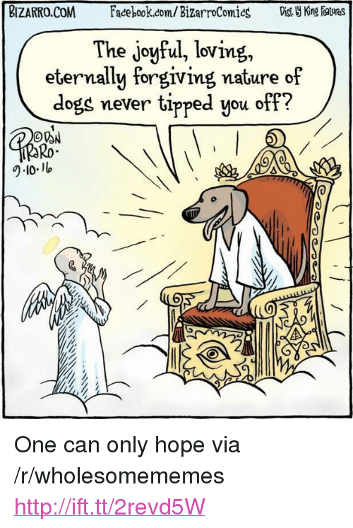 """Dogs, Facebook, and facebook.com: BIZARRO.COM  Facebook.com/ BizarroComics  Dist King atues  The joyful, loving,  eternally forgiving nature of  dogs never tipped you off?  Ro  9-101 <p>One can only hope via /r/wholesomememes <a href=""""http://ift.tt/2revd5W"""">http://ift.tt/2revd5W</a></p>"""