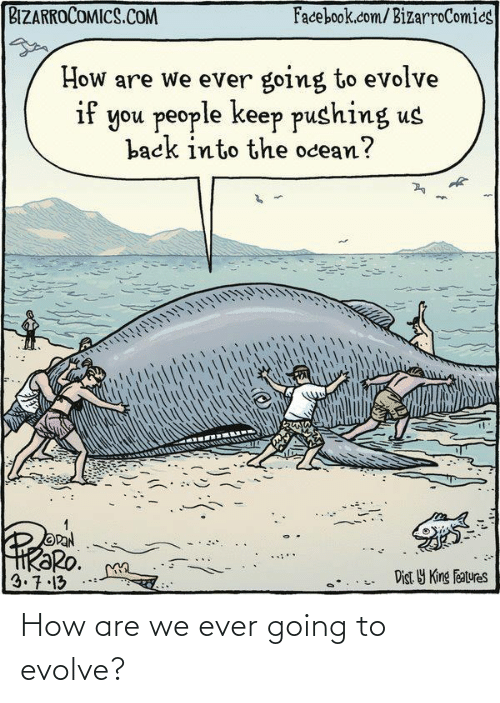 facebook.com: BIZARROCOMICS.COM  Facebook.com/BizarroComics  How are we ever going to evolve  if you people keep pushing us  back into the ocean?  OPAN  HRƏRO.  3.7.13  Dist Y King Features How are we ever going to evolve?