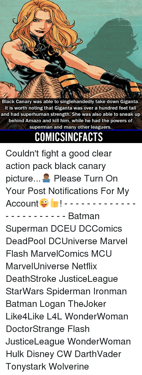 Batman, Disney, and Memes: Black Canary was able to singlehandedly take down Giganta.  It is worth noting that Giganta was over a hundred feet tall  and had superhuman strength. She was also able to sneak up  behind Amazo and kill him, while he had the powers of  superman and many other leaguers.  COMICSINCFACTS Couldn't fight a good clear action pack black canary picture...🤷🏾‍♂️ Please Turn On Your Post Notifications For My Account😜👍! - - - - - - - - - - - - - - - - - - - - - - - - Batman Superman DCEU DCComics DeadPool DCUniverse Marvel Flash MarvelComics MCU MarvelUniverse Netflix DeathStroke JusticeLeague StarWars Spiderman Ironman Batman Logan TheJoker Like4Like L4L WonderWoman DoctorStrange Flash JusticeLeague WonderWoman Hulk Disney CW DarthVader Tonystark Wolverine