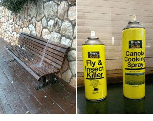 Black, Gold, and Fly: Black  Gold  Canola  Cooking  Black  Gold  Fly &  Insect  Spray  Killer.