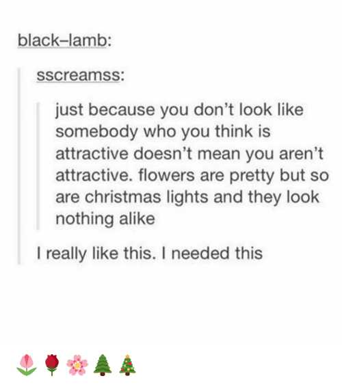 alike: black-lamb:  sscreamss:  just because you don't look like  somebody who you think is  attractive doesn't mean you aren't  attractive. flowers are pretty but so  are christmas lights and they look  nothing alike  I really like this. I needed this 🌷🌹🌸🌲🎄