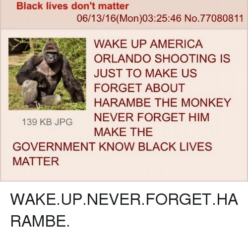 America, Black Lives Matter, and Black Lives Matter: Black lives don't matter  06/13/16 (Mon)03:25:46 No. 77080811  WAKE UP AMERICA  ORLANDO SHOOTING IS  JUST TO MAKE US  FORGET ABOUT  HARAMBE THE MONKEY  139 KB JPG  NEVER FORGET HIM  MAKE THE  GOVERNMENT KNOW BLACK LIVES  MATTER WAKE.UP.NEVER.FORGET.HARAMBE.