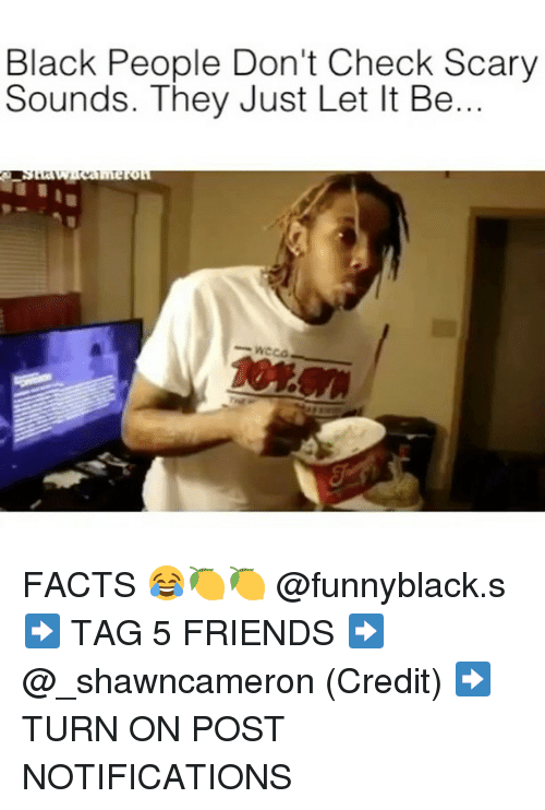 Facts, Friends, and Black: Black People Don't Check Scary  Sounds. They Just Let It Be... FACTS 😂🍋🍋 @funnyblack.s ➡️ TAG 5 FRIENDS ➡️ @_shawncameron (Credit) ➡️ TURN ON POST NOTIFICATIONS
