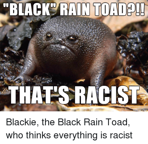 """Funny, Black, and Blacked: """"BLACK RAIN TOAD  THATS RACIST Blackie, the Black Rain Toad, who thinks everything is racist"""