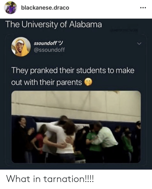 University of Alabama: blackanese.draco  The University of Alabama  ssound off  @ssoundoff  They pranked their students to make  out with their parents What in tarnation!!!!