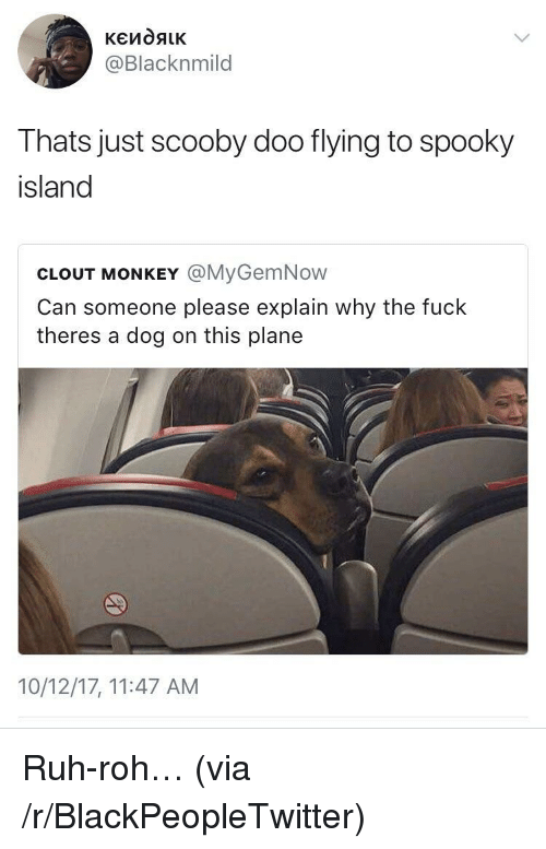 Ruh: @Blacknmild  Thats just scooby doo flying to spooky  island  CLOUT MONKEY @MyGemNow  Can someone please explain why the fuck  theres a dog on this plane  10/12/17, 11:47 AM <p>Ruh-roh&hellip; (via /r/BlackPeopleTwitter)</p>