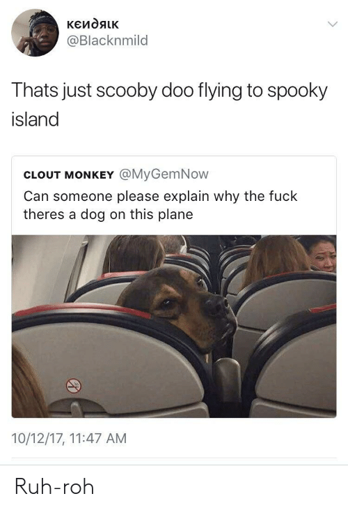 Ruh: @Blacknmild  Thats just scooby doo flying to spooky  island  CLOUT MONKEY @MyGemNow  Can someone please explain why the fuck  theres a dog on this plane  10/12/17, 11:47 AM Ruh-roh