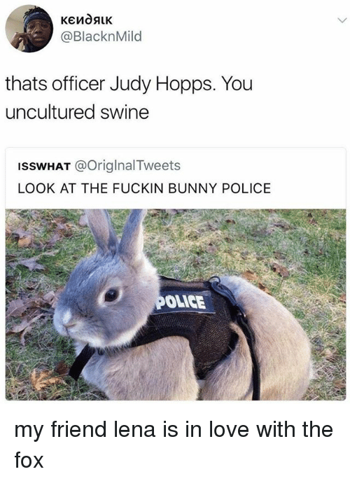 Love, Police, and Fox: @BlacknMild  thats officer Judy Hopps. You  uncultured swine  ISSWHAT @OriglnalTweets  LOOK AT THE FUCKIN BUNNY POLICE  OLICE my friend lena is in love with the fox