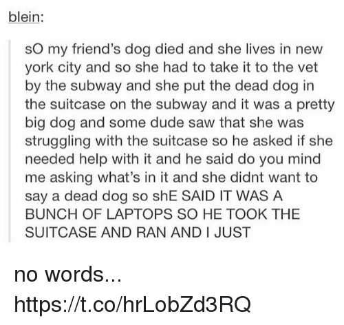Dude, Friends, and Memes: blein:  sO my friend's dog died and she lives in new  york city and so she had to take it to the vet  by the subway and she put the dead dog in  the suitcase on the subway and it was a pretty  big dog and some dude saw that she was  struggling with the suitcase so he asked if she  needed help with it and he said do you mind  me asking what's in it and she didnt want to  say a dead dog so shE SAID IT WAS A  BUNCH OF LAPTOPS SO HE TOOK THE  SUITCASE AND RAN AND I JUST no words... https://t.co/hrLobZd3RQ