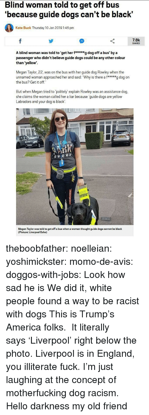 Hello Darkness My Old: Blind woman told to get off bus  'because guide dogs can't be black'  Kate Buck Thursday 10 Jan 2019 1:46 pm  7.8k  SHARES  A blind woman was told to 'get her f*****g dog off a bus' by a  passenger who didn't believe guide dogs could be any other colour  than 'yellow  Megan Taylor, 22, was on the bus with her guide dog Rowley when the  unnamed woman approached her and said: Why is there a f*****g dog on  the bus? Get it off  But when Megan tried to politely' explain Rowley was an assistance dog,  she claims the woman called her a liar because guide dogs are yellow  Labradors and your dog is black  1  Megan Taylor was told to get off a bus when a woman thought guide dogs cannot be black  (Picture: Liverpool Echo) theboobfather:  noelleian:  yoshimickster: momo-de-avis:  doggos-with-jobs:  Look how sad he is  We did it, white people found a way to be racist with dogs  This is Trump's America folks.   It literally says 'Liverpool' right below the photo. Liverpool is in England, you illiterate fuck.  I'm just laughing at the concept of motherfucking dog racism.  Hello darkness my old friend