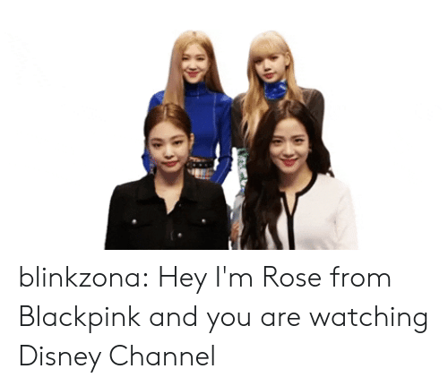 Disney Channel: blinkzona:  Hey I'm Rose from Blackpink and you are watching Disney Channel