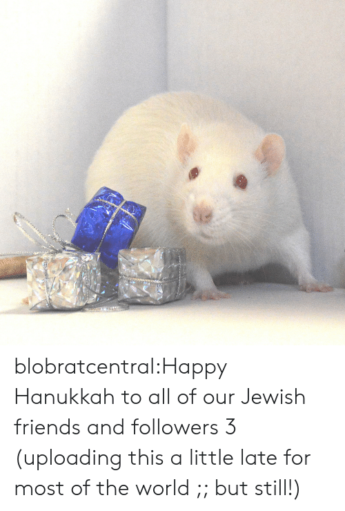 happy hanukkah: blobratcentral:Happy Hanukkah to all of our Jewish friends and followers 3 (uploading this a little late for most of the world ;; but still!)