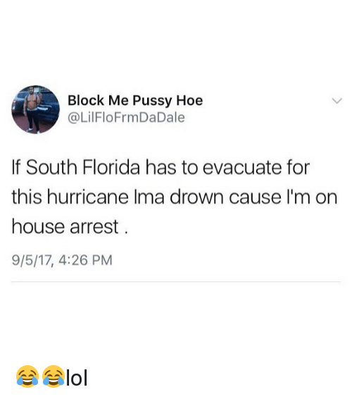 Hoe, Memes, and Pussy: Block Me Pussy Hoe  @LilFloFrmDaDale  If South Florida has to evacuate for  this hurricane Ilma drown cause I'm on  house arrest  9/5/17, 4:26 PM 😂😂lol