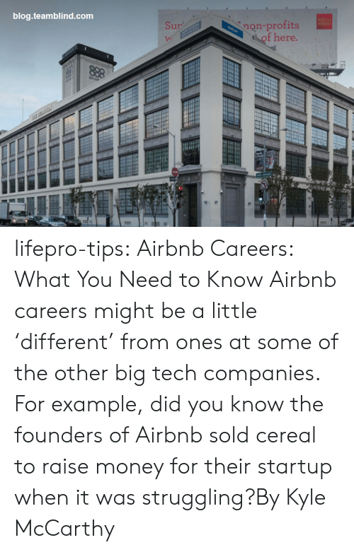 Sur: blog.teamblind.com  non-profits  of here.  Sur  VA) lifepro-tips:   Airbnb Careers: What You Need to Know  Airbnb careers might be a little 'different' from ones at some of the other big tech companies. For example, did you know the founders of Airbnb sold cereal to raise money for their startup when it was struggling?By Kyle McCarthy