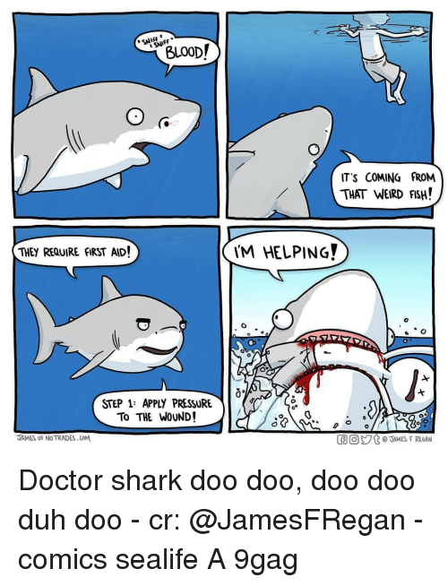 Its Coming: BLOOD!  SNIFF  IT'S COMING FROM  THAT WEIRD FSH!  THEY REQUIRE FIRST AID!  M HELPING  STEP 1: APPLY PRESSURE  To THE WOUND!  JAMES oF NO TRADES.CoM  胴回ジt @TAMES F REGAN Doctor shark doo doo, doo doo duh doo - cr: @JamesFRegan - comics sealife A 9gag