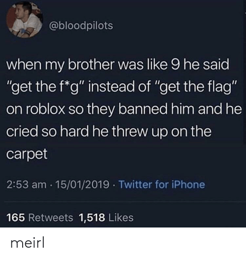 "roblox: @bloodpilots  when my brother was like 9 he said  ""get the f*g"" instead of ""get the flag""  on roblox so they banned him and he  cried so hard he threw up on the  carpet  2:53 am 15/01/2019 Twitter for iPhone  165 Retweets 1,518 Likes meirl"