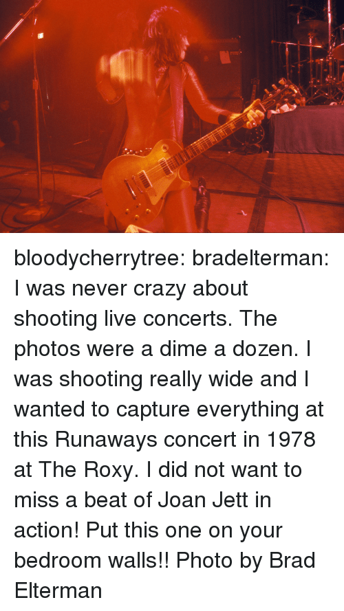 runaways: bloodycherrytree:  bradelterman:  I was never crazy about shooting live concerts. The photos were a dime a dozen. I was shooting really wide and I wanted to capture everything at this Runaways concert in 1978 at The Roxy. I did not want to miss a beat of Joan Jett in action! Put this one on your bedroom walls!! Photo by Brad Elterman