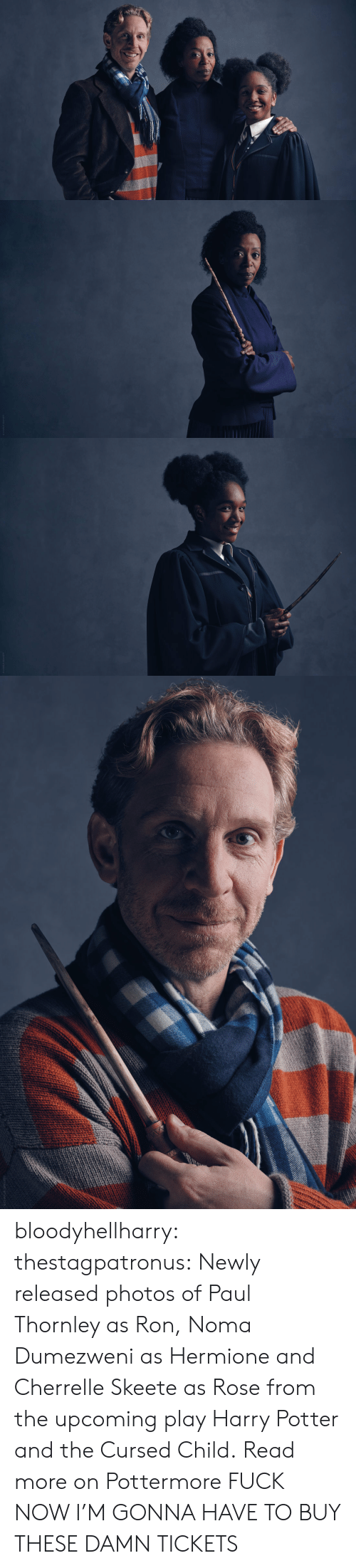 Harry Potter And The Cursed Child: bloodyhellharry:  thestagpatronus: Newly released photos of Paul Thornley as Ron, Noma Dumezweni as Hermione and Cherrelle Skeete as Rose from the upcoming play Harry Potter and the Cursed Child. Read more on Pottermore  FUCK NOW I'M GONNA HAVE TO BUY THESE DAMN TICKETS