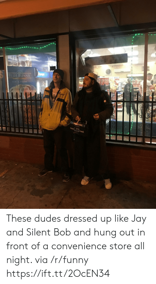 jay and silent bob: BLUE BUNNY  lce Cream  X-BASS  X-BASS These dudes dressed up like Jay and Silent Bob and hung out in front of a convenience store all night. via /r/funny https://ift.tt/2OcEN34