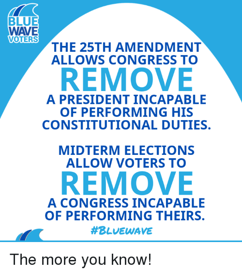 The More You Know, Blue, and Congress: BLUE  WAVE  VOTERS  THE 25TH AMENDMENT  ALLOWS CONGRESS TO  REMOVE  A PRESIDENT INCAPABLE  OF PERFORMING HIS  CONSTITUTIONAL DUTIES.  MIDTERM ELECTIONS  ALLOW VOTERS TO  REMOVE  A CONGRESS INCAPABLE  OF PERFORMING THEIRS.  The more you know!