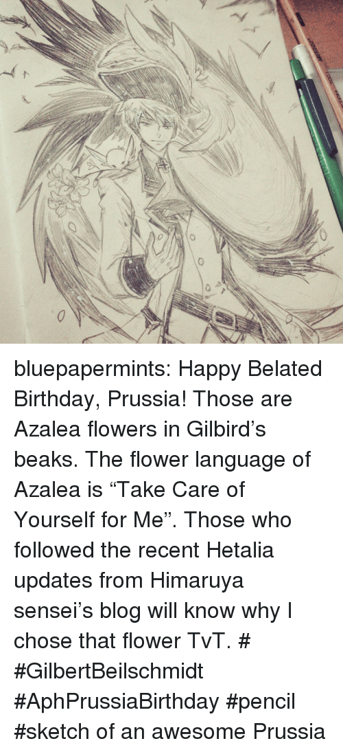"""Belated Birthday: bluepapermints: Happy Belated Birthday, Prussia!  Those are Azalea flowers in Gilbird's beaks. The flower language of Azalea is """"Take Care of Yourself for Me"""". Those who followed the recent Hetalia updates from Himaruya sensei's blog will know why I chose that flower TvT.  # #GilbertBeilschmidt #AphPrussiaBirthday #pencil #sketch of an awesome Prussia"""