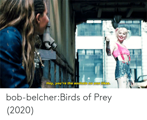 post: bob-belcher:Birds of Prey (2020)