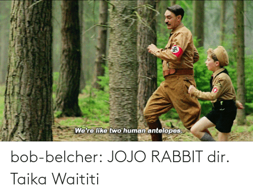 Rabbit: bob-belcher:  JOJO RABBIT dir. Taika Waititi