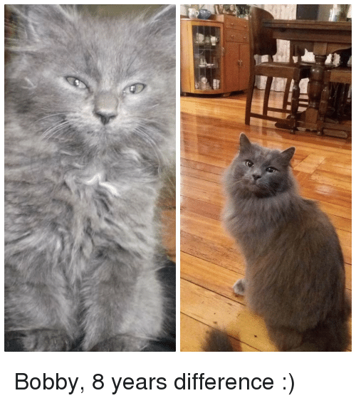 Years,  Bobby, and Difference