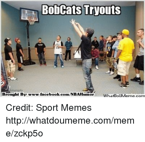 Facebook, Meme, and Memes: Bobcats Tryouts  Brought By www.facebook.com/NBAHumor DUN Credit: Sport Memes