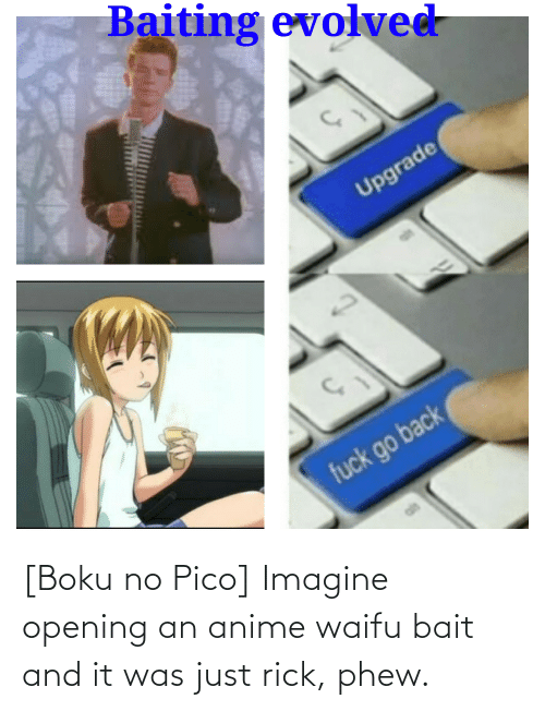 it-was-just: [Boku no Pico] Imagine opening an anime waifu bait and it was just rick, phew.