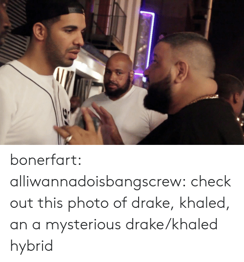 Khaled: bonerfart:   alliwannadoisbangscrew:  check out this photo of drake, khaled, an a mysterious drake/khaled hybrid
